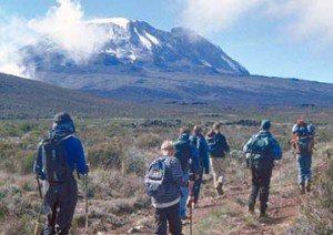 We offer many climbs and hikes on Kilimanjaro including the Shira Route.
