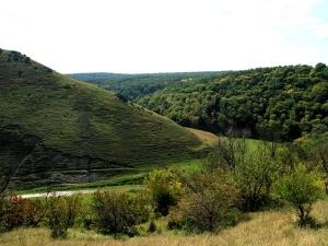 Prutul De Jos Natural Reservation