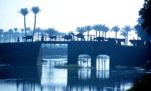 Egypt-Nile-Delta-Canal-007