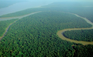 amazon_rainforest