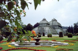 Palm-house-Schonbrunn-Palace-Vienna