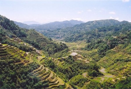 banaue-rice-terraces_philippines2