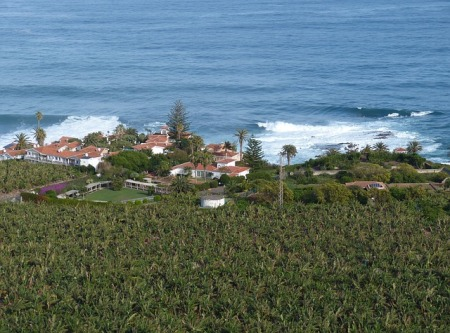 tenerife-canary-islands-landscape-nature-spain-sea