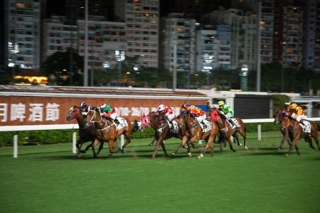 horse-racing-571489_960_720